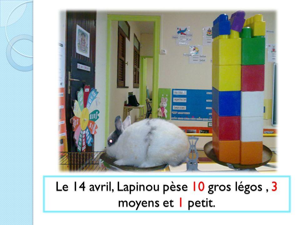 Le 14 avril, Lapinou pèse 10 gros légos , 3 moyens et 1 petit.