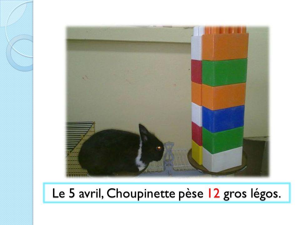Le 5 avril, Choupinette pèse 12 gros légos.