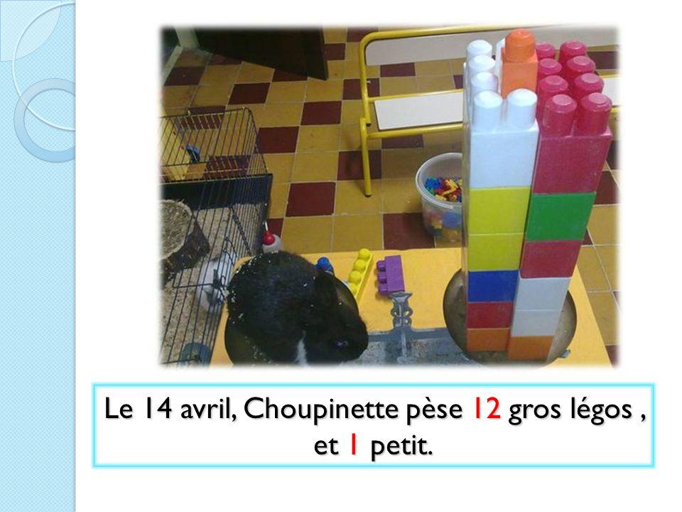 Le 14 avril, Choupinette pèse 12 gros légos , et 1 petit.
