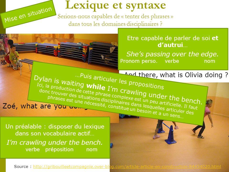 Lexique et syntaxe Serions-nous capables de « tenter des phrases » dans tous les domaines disciplinaires
