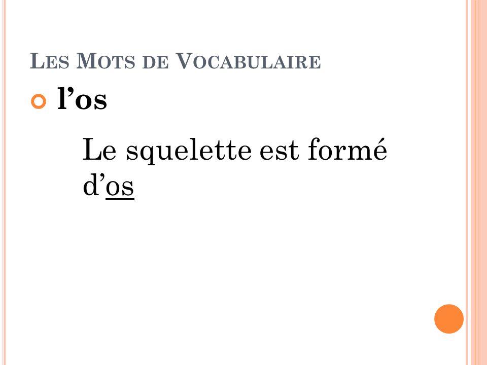 Les Mots de Vocabulaire