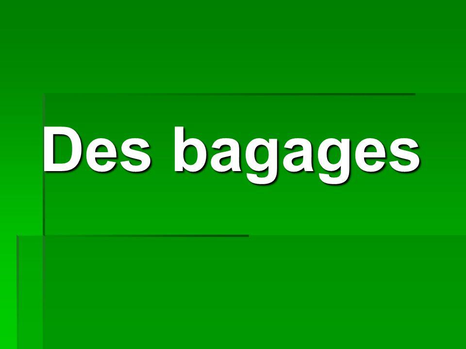 Des bagages