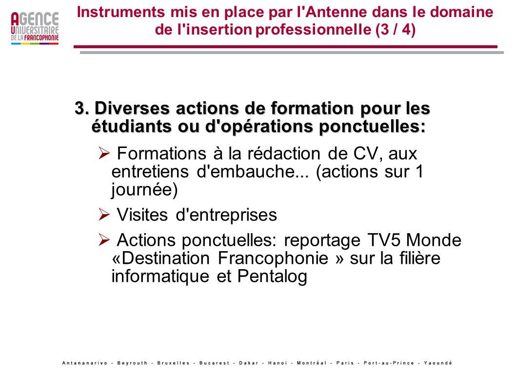 Instruments mis en place par l Antenne dans le domaine de l insertion professionnelle (3 / 4)