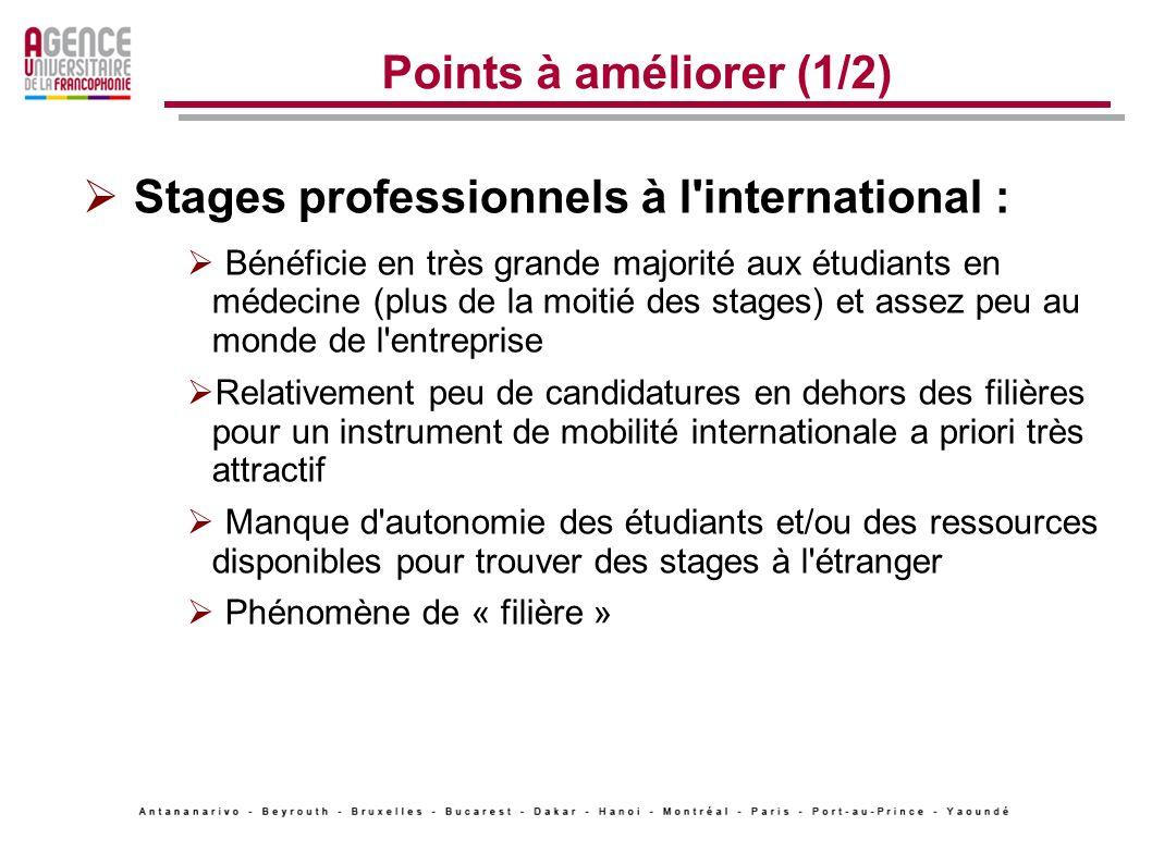 Stages professionnels à l international :