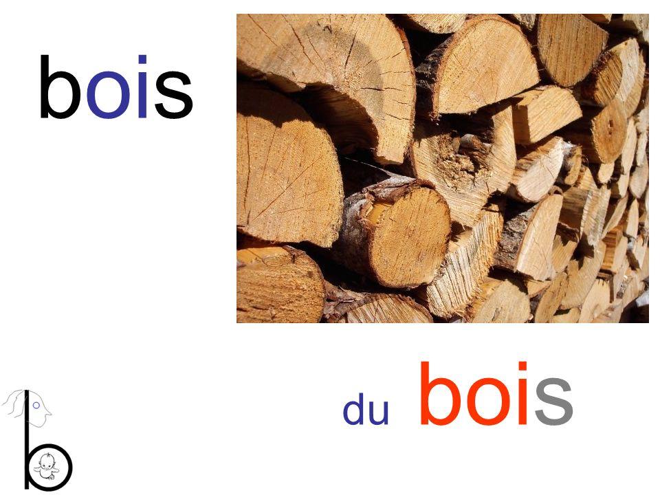 bois du bois
