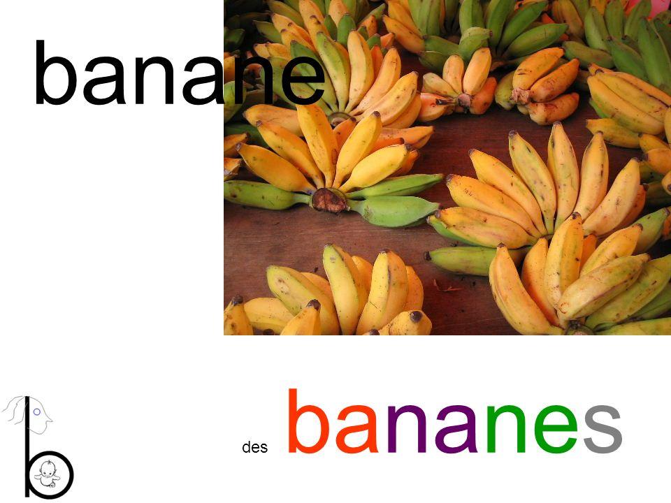 banane des bananes