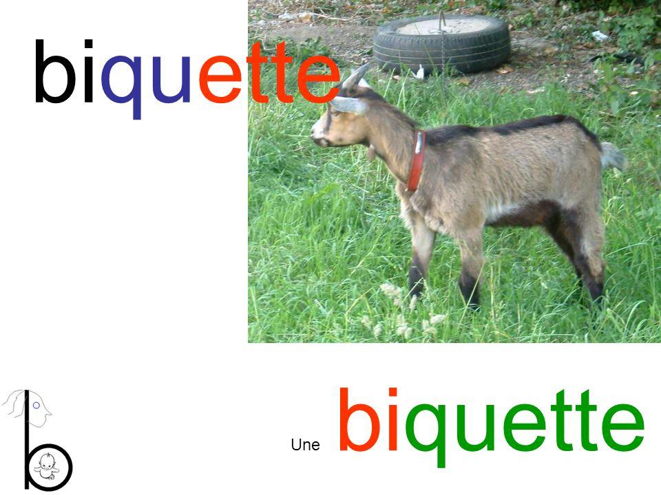 biquette Une biquette