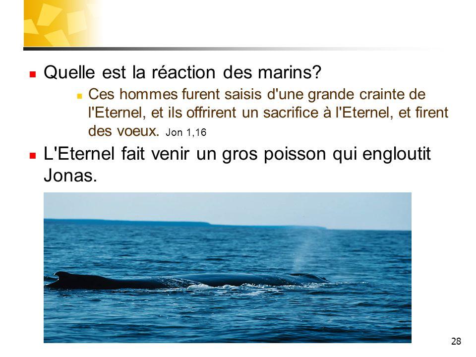 Quelle est la réaction des marins