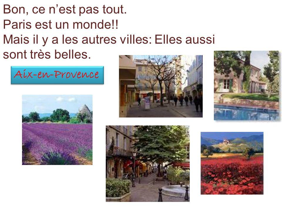 Bon, ce n'est pas tout.Paris est un monde!! Mais il y a les autres villes: Elles aussi sont très belles.