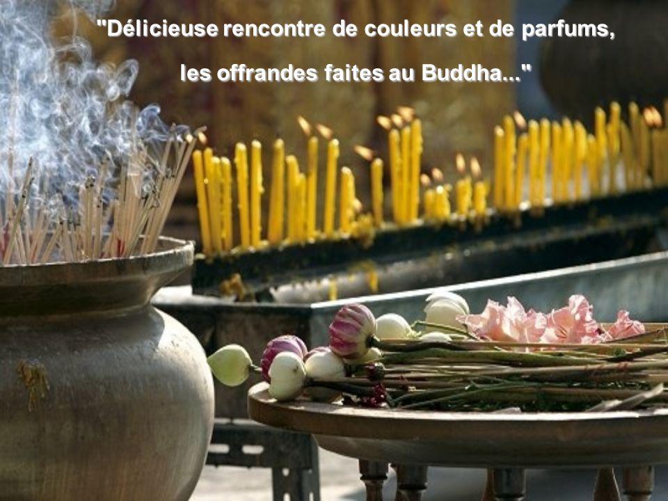 Délicieuse rencontre de couleurs et de parfums, les offrandes faites au Buddha...