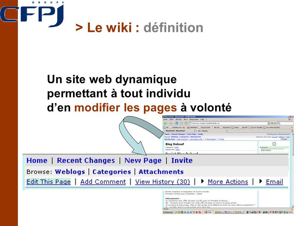 > Le wiki : définition