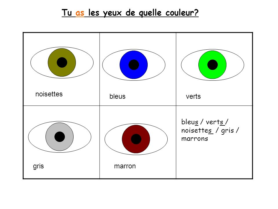 Tu as les yeux de quelle couleur