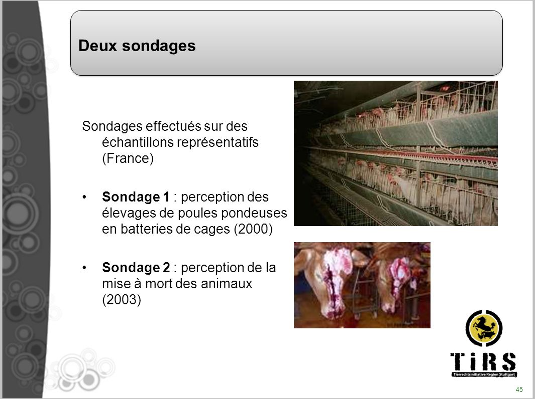 Deux sondages Sondages effectués sur des échantillons représentatifs (France)