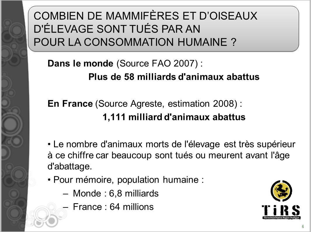 Plus de 58 milliards d animaux abattus