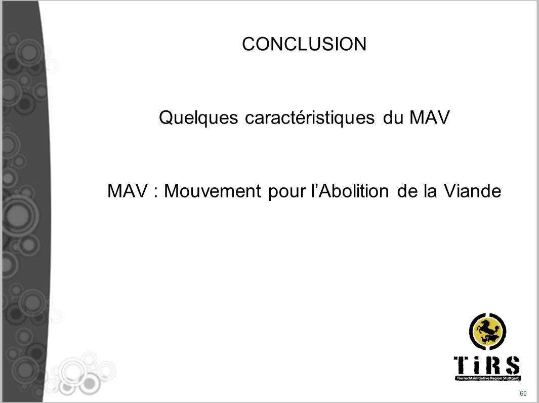Quelques caractéristiques du MAV