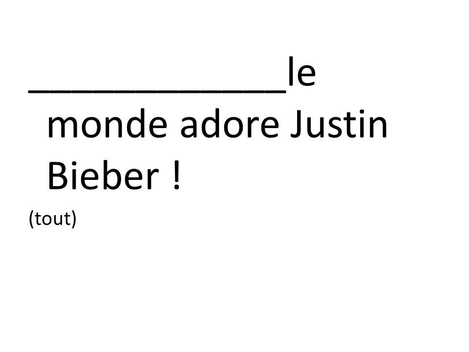 ____________le monde adore Justin Bieber !