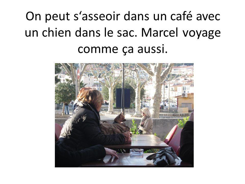 On peut s'asseoir dans un café avec un chien dans le sac