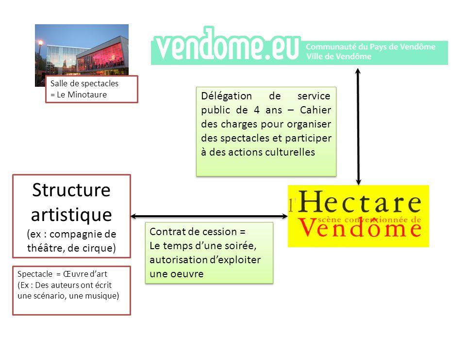 Structure artistique (ex : compagnie de théâtre, de cirque)