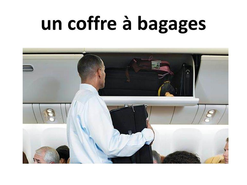 un coffre à bagages