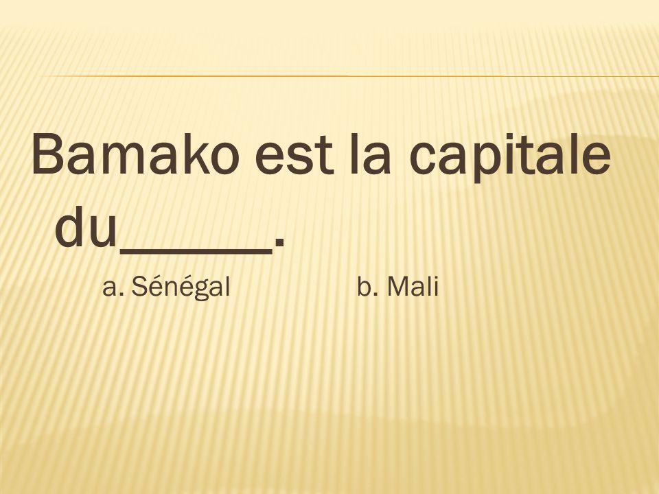 Bamako est la capitale du_____.