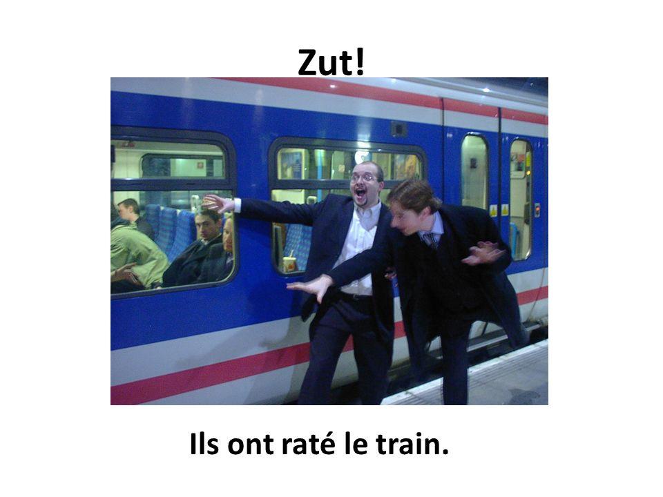 Zut! Ils ont raté le train.