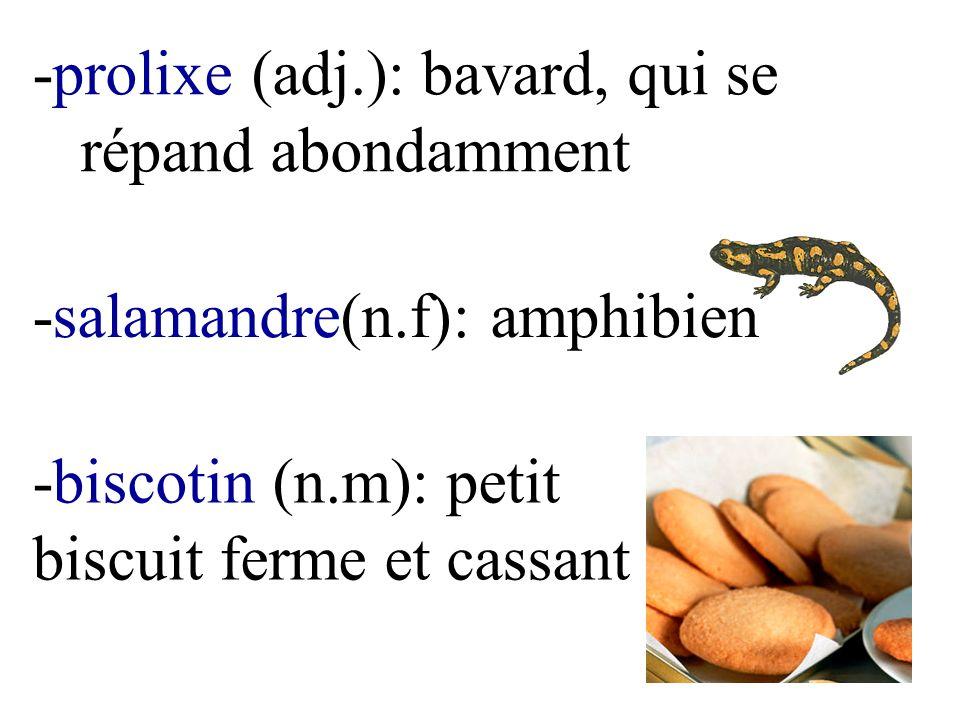 -prolixe (adj.): bavard, qui se répand abondamment