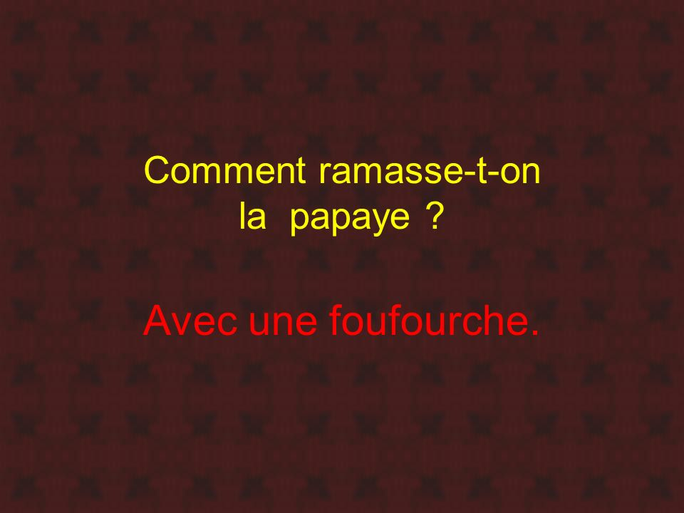 Comment ramasse-t-on la papaye