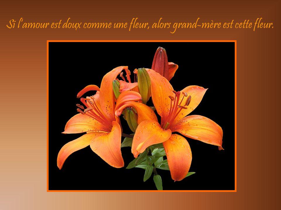 Si l'amour est doux comme une fleur, alors grand-mère est cette fleur.