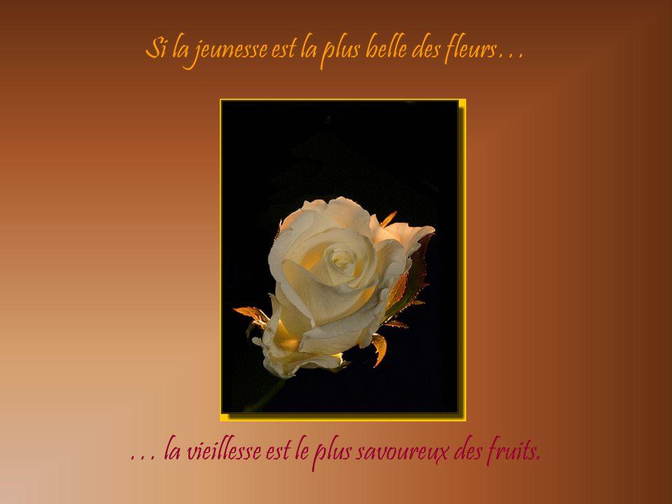 Si la jeunesse est la plus belle des fleurs…