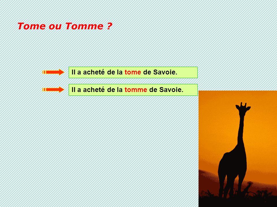 Tome ou Tomme Il a acheté de la tome de Savoie.