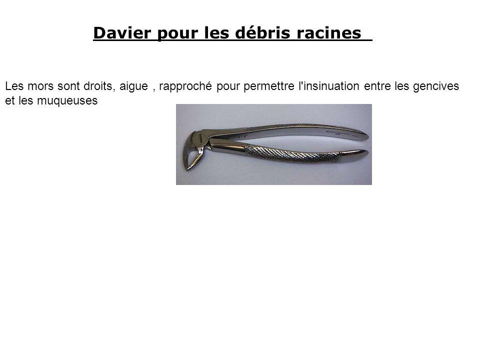 Davier pour les débris racines