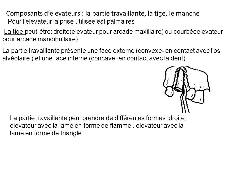 Composants d'elevateurs : la partie travaillante, la tige, le manche