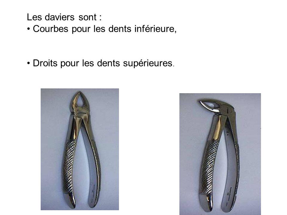 Les daviers sont : • Courbes pour les dents inférieure, • Droits pour les dents supérieures.