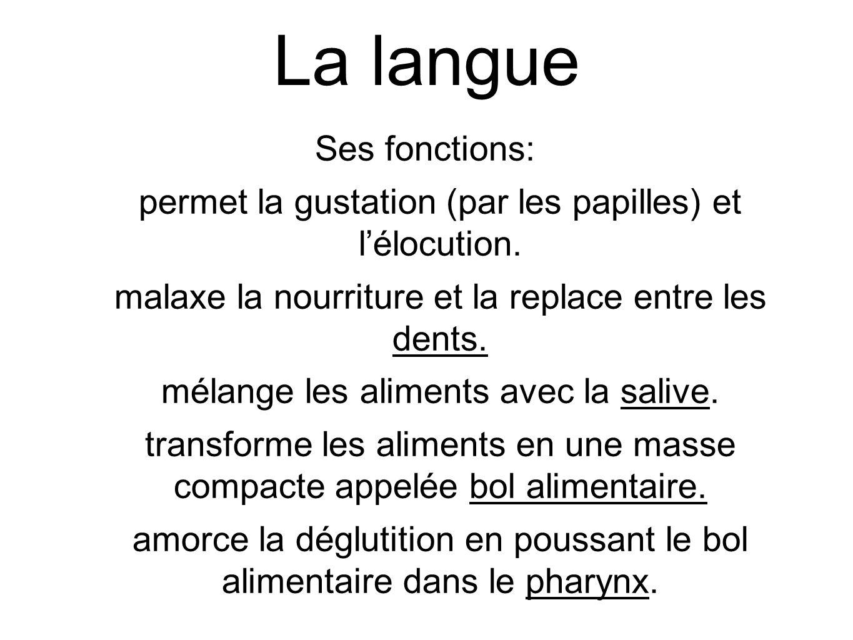 La langue Ses fonctions: