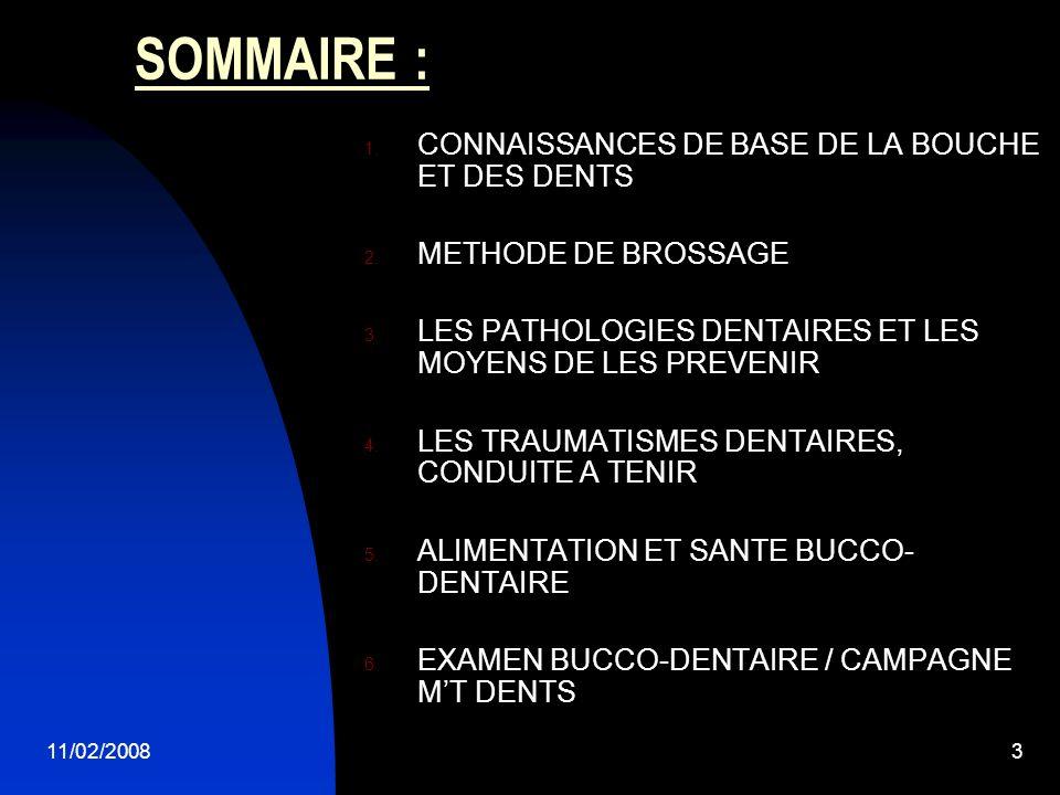 SOMMAIRE : CONNAISSANCES DE BASE DE LA BOUCHE ET DES DENTS