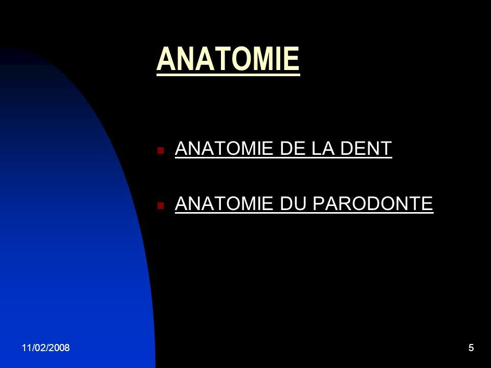 ANATOMIE ANATOMIE DE LA DENT ANATOMIE DU PARODONTE 11/02/2008