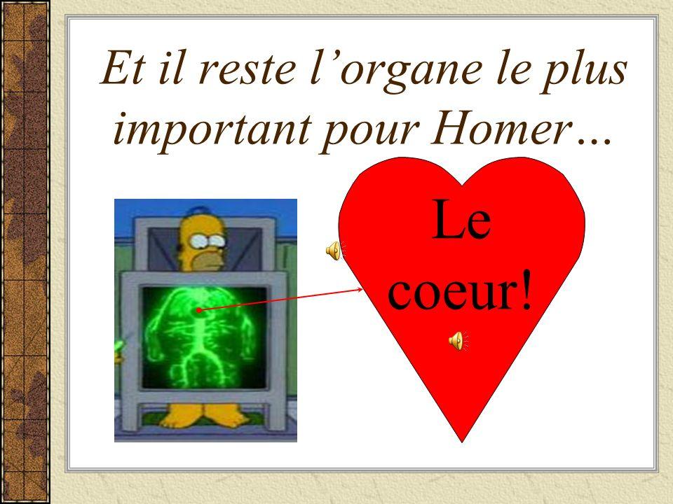 Et il reste l'organe le plus important pour Homer…