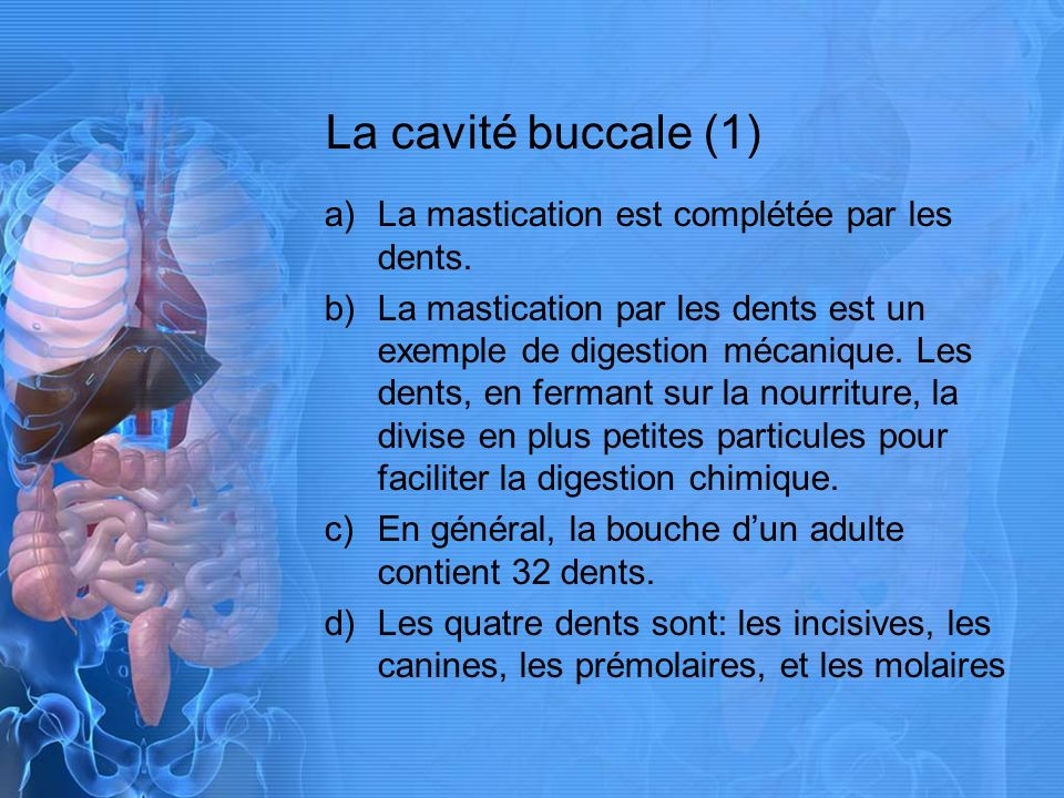 La cavité buccale (1) La mastication est complétée par les dents.