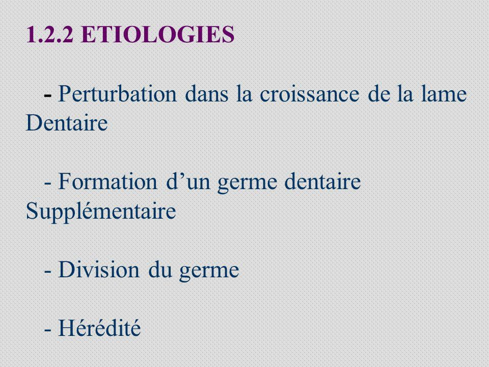 1.2.2 ETIOLOGIES - Perturbation dans la croissance de la lame. Dentaire. - Formation d'un germe dentaire.