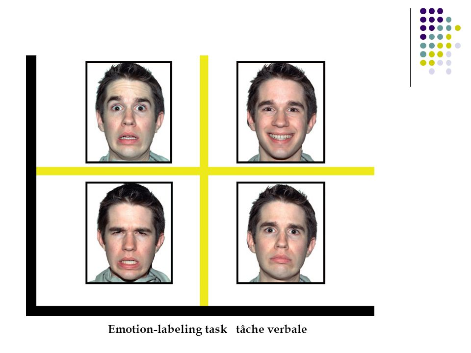 Emotion-labeling task tâche verbale