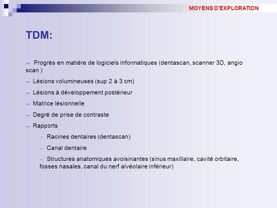MOYENS D'EXPLORATION TDM: Progrès en matière de logiciels informatiques (dentascan, scanner 3D, angio scan )