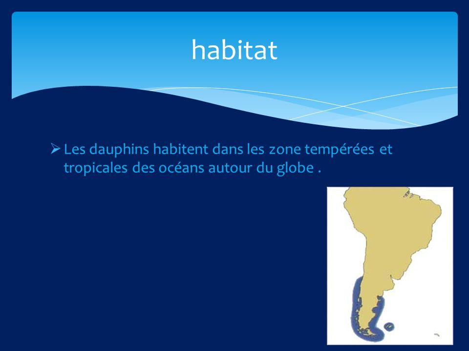 habitat Les dauphins habitent dans les zone tempérées et tropicales des océans autour du globe .