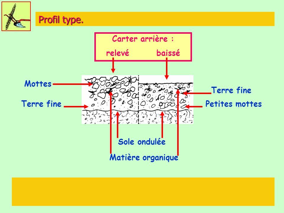 Profil type. Carter arrière : relevé baissé Mottes Terre fine