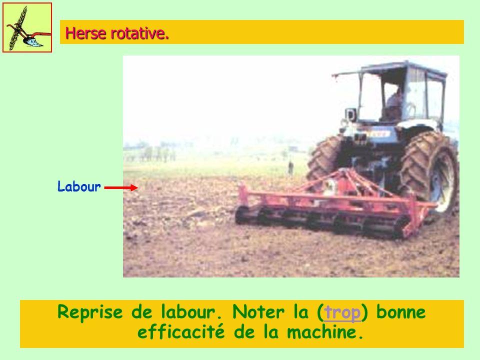 Reprise de labour. Noter la (trop) bonne efficacité de la machine.