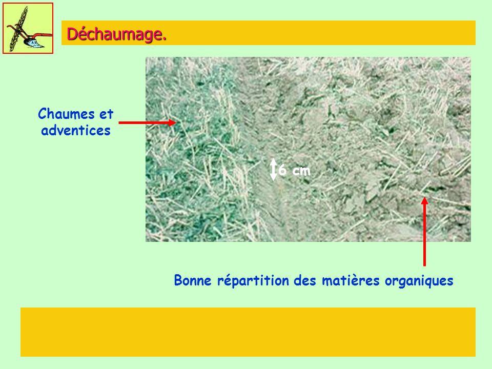 Bonne répartition des matières organiques