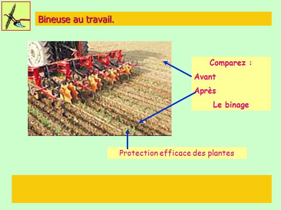 Protection efficace des plantes