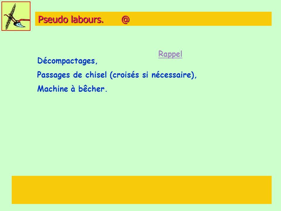 Pseudo labours. @ Rappel Décompactages,