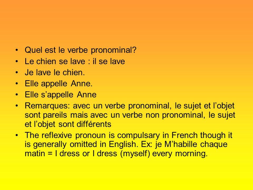 Quel est le verbe pronominal