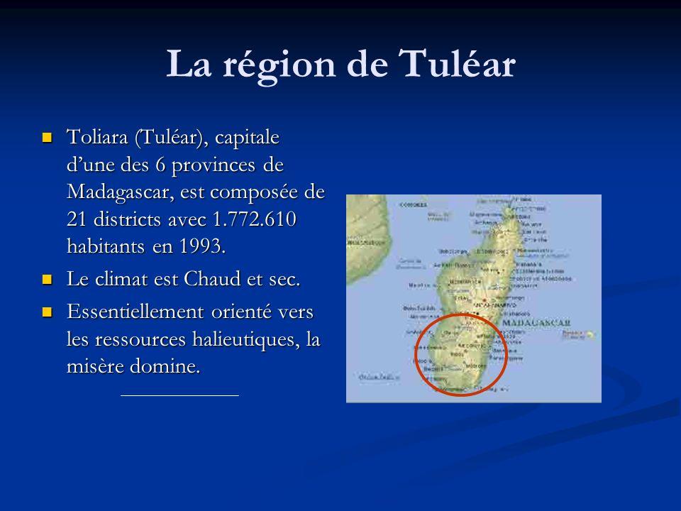 La région de Tuléar Toliara (Tuléar), capitale d'une des 6 provinces de Madagascar, est composée de 21 districts avec 1.772.610 habitants en 1993.