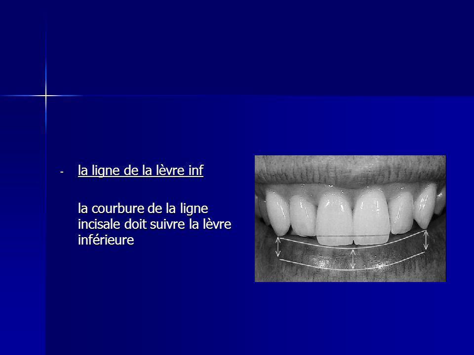 la ligne de la lèvre inf la courbure de la ligne incisale doit suivre la lèvre inférieure